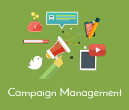 Campaign Management Golda Coast, Australia